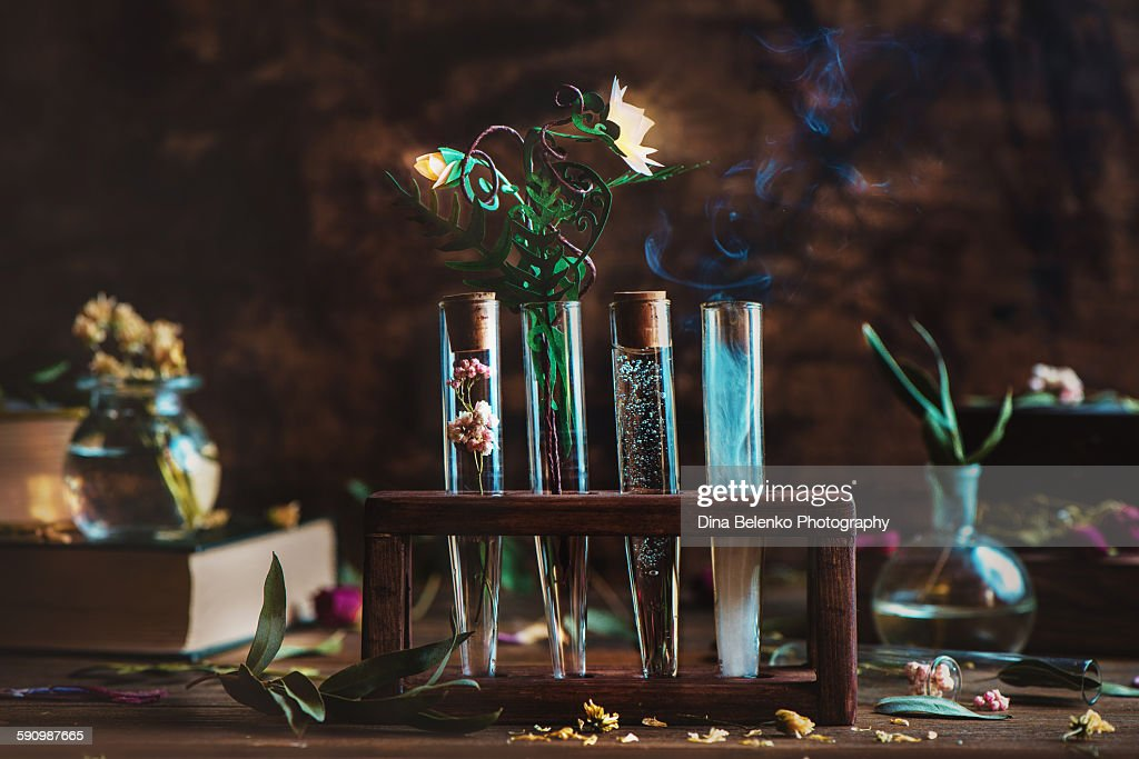 Alchemical flower : Photo