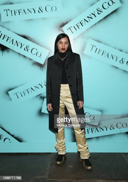 Aleali May attends the Tiffany Co Modern Love Photography Exhibition on February 9 2019 in New York City