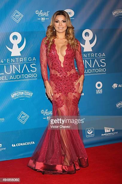 Aleida Nunez attends Lunas Del Auditorio Nacional 2015 at Auditorio Nacional on October 28 2015 in Mexico City Mexico