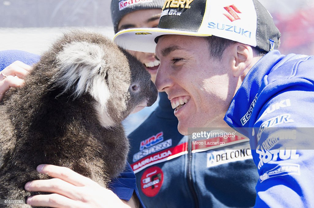 Aleix Espargaro of Spain and Team Suzuki ECSTAR smiles with koala in paddock during previews ahead of the 2016 MotoGP of Australia at Phillip Island Grand Prix Circuit on October 20, 2016 in Phillip Island, Australia.