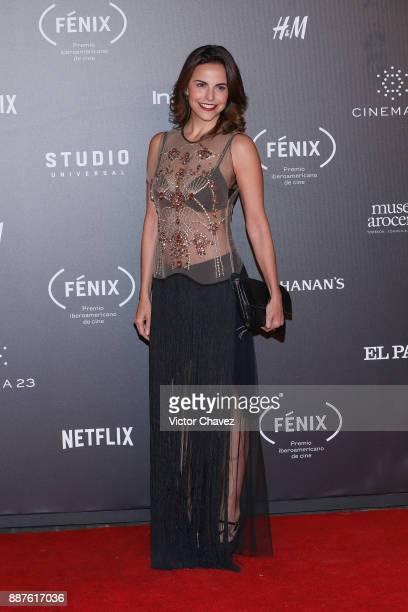 Alejandra Ambrosi attends the Premio Iberoamericano De Cine Fenix 2017 at Teatro de La Ciudad on December 6 2017 in Mexico City Mexico