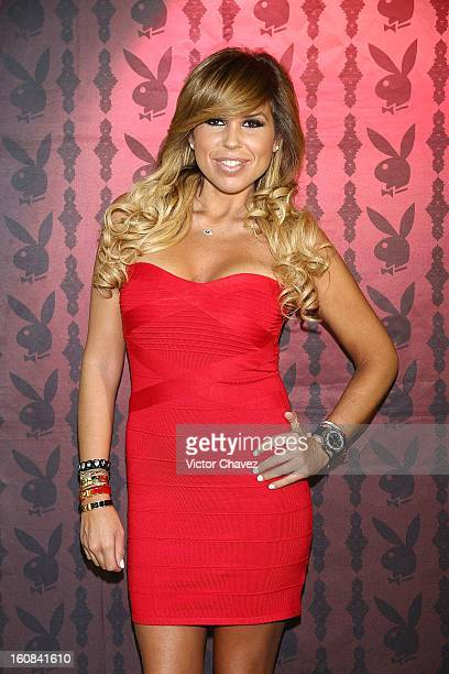 Alejandra de la Fuente Bozzo attends the Playboy Mexico magazine february 2013 issue photocall at La Mansion Polanco on February 6 2013 in Mexico...