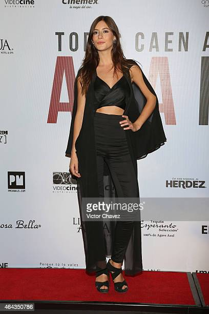 Alejandra Guilmant attends A La Mala Mexico City premiere at Cinepolis Antara Polanco on February 24 2015 in Mexico City Mexico