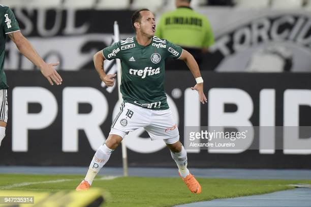 Alejandro Guerra of Palmeiras celebrates their first scored goal during the match between Botafogo and Palmeiras as part of Brasileirao Series A 2018...