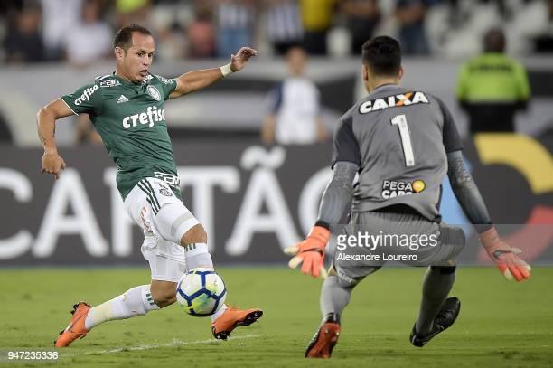 Alejandro Guerra of Palmeiras kick to score their first goal during the match between Botafogo and Palmeiras as part of Brasileirao Series A 2018 at...