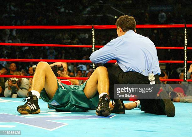 Alejandro Terra Garcia down for the count during Night of the Undisputed Boxing Match Featuring Zab Super Judah and Jamie El Martillo Rangel at the...