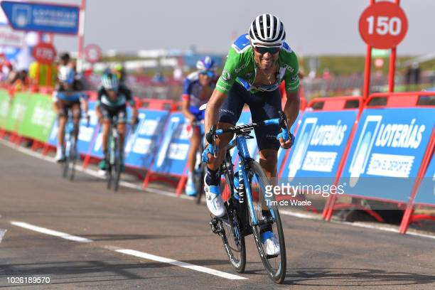 Alejandro Valverde of Spain and Movistar Team Green Points Jersey / during the 73rd Tour of Spain 2018 Stage 9 a 2008km stage from Talavera de la...