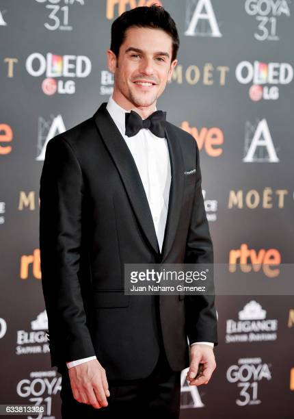 Alejo Sauras attends the 31st edition of the 'Goya Cinema Awards' ceremony at Madrid Marriott Auditorium on February 4 2017 in Madrid Spain