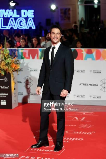 Alejo Sauras attends the 'Malaga' award 2019 during the 22th Malaga Film Festival at the Cervantes Theater on March 17 2019 in Malaga Spain