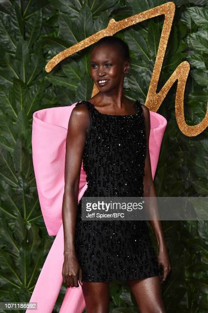 Alek Wek arrives at The Fashion Awards 2018 In Partnership With Swarovski at Royal Albert Hall on December 10 2018 in London England