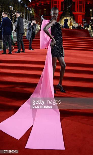 Alek Wek arrives at The Fashion Awards 2018 in partnership with Swarovski at the Royal Albert Hall on December 10 2018 in London England