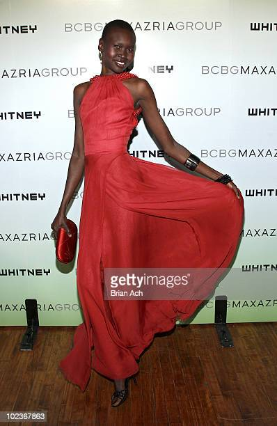 Alek Wek attends the 2010 Whitney Art Party at 82 Mercer on June 9 2010 in New York City