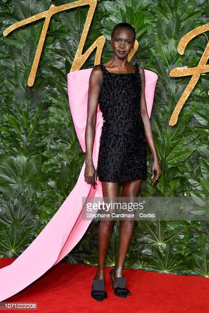 Alek Wek attends the Fashion Awards 2018 in partnership with Swarovski at Royal Albert Hall on December 10 2018 in London England