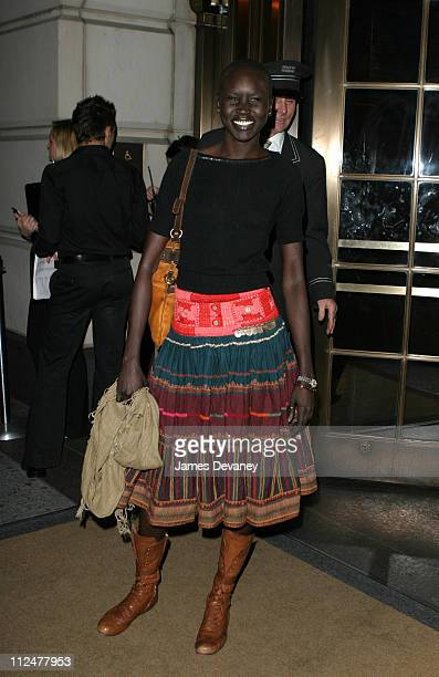 Alek Wek during Fashion's Famous Faces Celebrate 30 Years of Their Favorite Photographer at Bergdorf Goodman in New York City, New York, United...