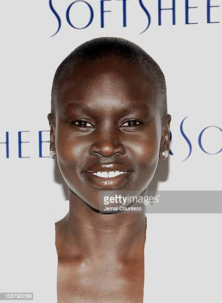 Alek Wek during Kelly Rowland and Alek Wek Preview SoftsheenCarson's New Product Line at Lotus 212 in New York City New York United States