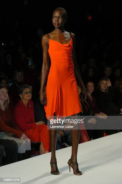 Alek Wek during Red Dress Collection 2004 - Raising Awareness Of Women And Heart Disease at Bryant Park in New York City, New York, United States.