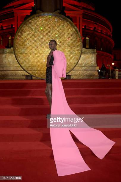 Alek Wek during The Fashion Awards 2018 In Partnership With Swarovski at Royal Albert Hall on December 10 2018 in London England