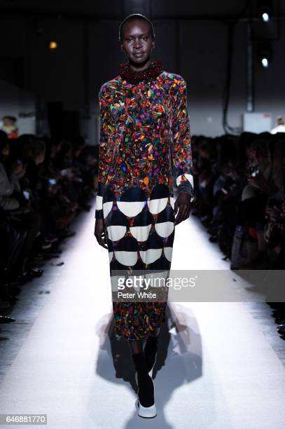 Alek Wek walks the runway during the Dries Van Noten show as part of the Paris Fashion Week Womenswear Fall/Winter 2017/2018 on March 1, 2017 in...