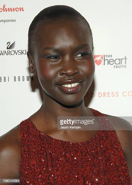 Alek Wek wearing Ellen Tracy during Mercedes-Benz Fashion Week Fall 2007 - Heart Truth Red Dress - Arrivals in New York City, New York, United States.