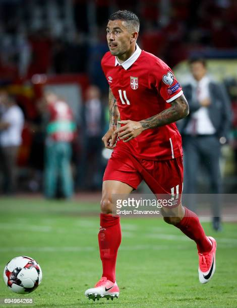 Aleksandar Kolarov of Serbia in action during the FIFA 2018 World Cup Qualifier between Serbia and Wales at stadium Rajko Mitic on June 11 2017 in...