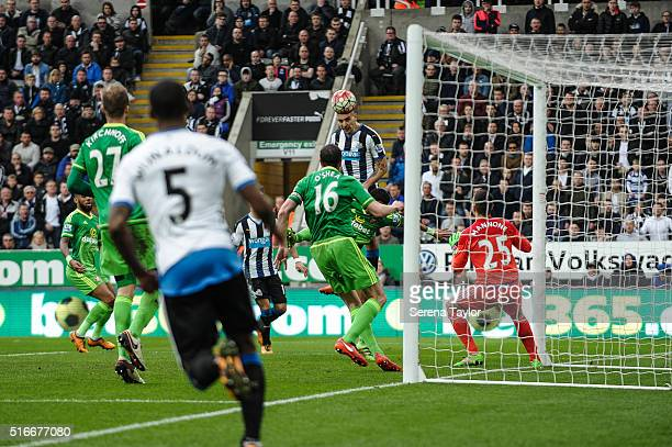 Aleksandar Mitrovic of Newcastle scores the equalising goal during the Premier League match between Newcastle United and Sunderland at StJames' Park...