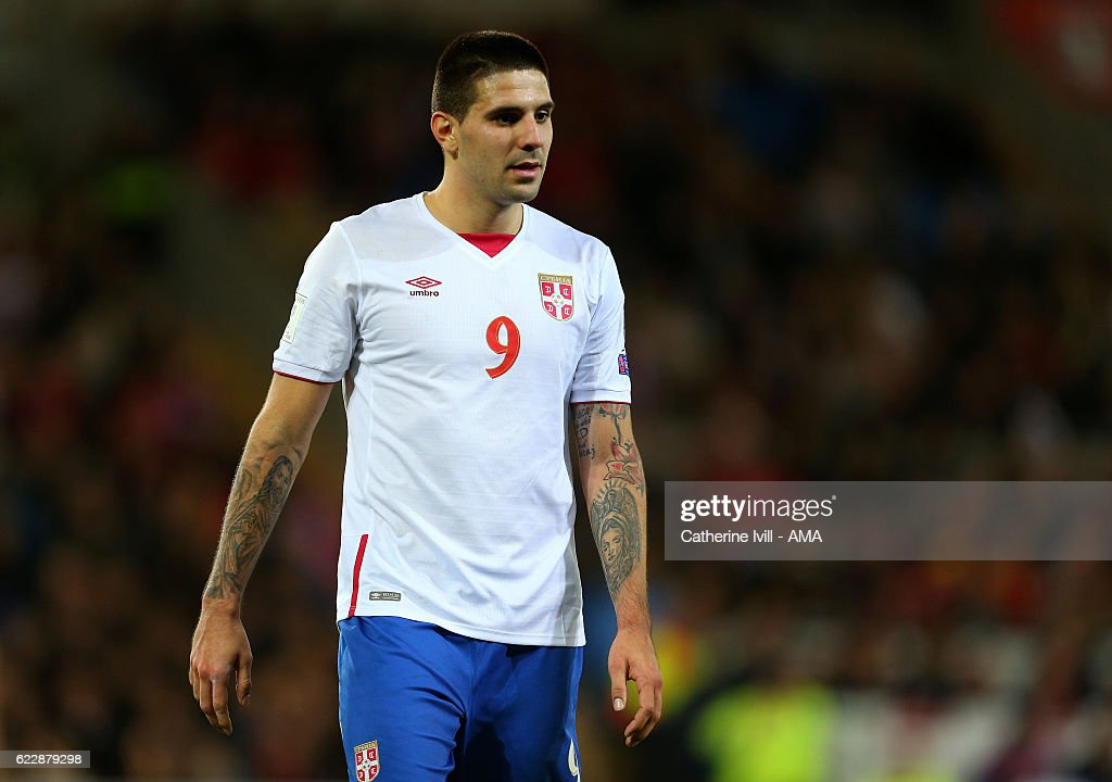 Wales v Serbia - FIFA 2018 World Cup Qualifier : News Photo