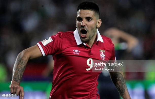 Aleksandar Mitrovic of Serbia is in action during the FIFA 2018 World Cup Qualifier between Serbia and Wales at stadium Rajko Mitic on June 11 2017...