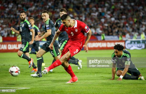 Aleksandar Mitrovic of Serbia scores the goal near James Chester and Ashley Williams of Wales during the FIFA 2018 World Cup Qualifier between Serbia...