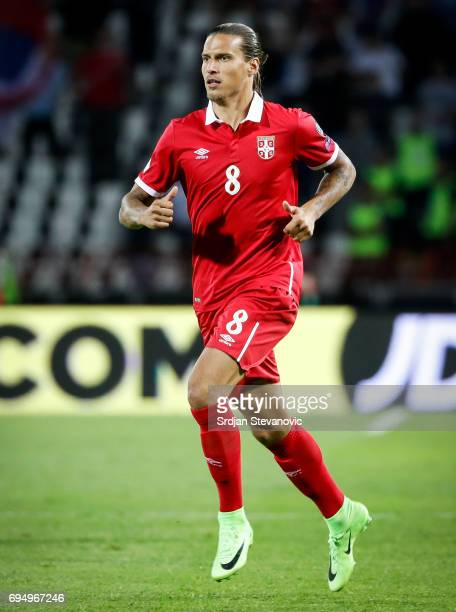 Aleksandar Prijovic of Serbia in action during the FIFA 2018 World Cup Qualifier between Serbia and Wales at stadium Rajko Mitic on June 11 2017 in...