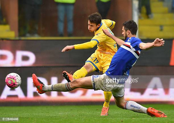 Aleksandar Tonev of Frosinone competes for the ball with Andrea Ranocchia of UC Sampdoria during the Serie A match between UC Sampdoria and Frosinone...