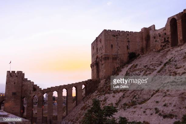 aleppo citadel - aleppo stock pictures, royalty-free photos & images