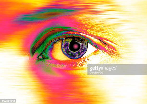 alert eye - vcg stock pictures, royalty-free photos & images