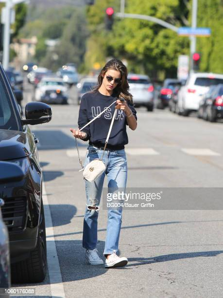 Alessandra Ambrosio is seen on November 10 2018 in Los Angeles California