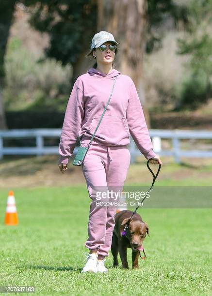 Alessandra Ambrosio is seen taking her dog Cinnamon for a walk on March 18 2020 in Los Angeles California