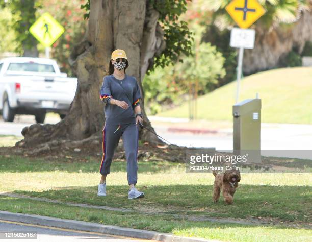 Alessandra Ambrosio is seen walking her dog on May 24 2020 in Los Angeles California