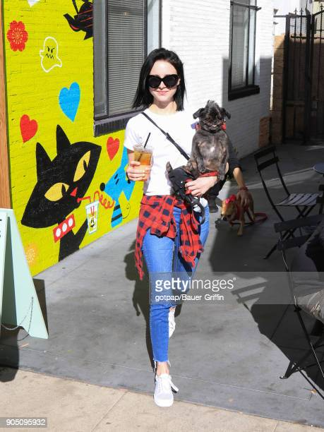 Alessandra Torresani is seen on January 14 2018 in Los Angeles California