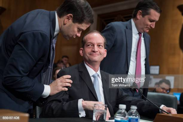 Alex Acosta center nominee for Secretary of Labor talks with Sens Marco Rubio RFla left and Ted Cruz RTexas after the senators introduced him during...