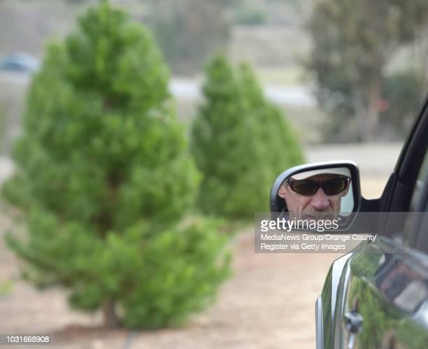 Alex Adam, of Laguna Niguel, looks for his tree at Peltzer Pines in Silverado on Friday. Adam said he brings his black labrador to help him pick tree...