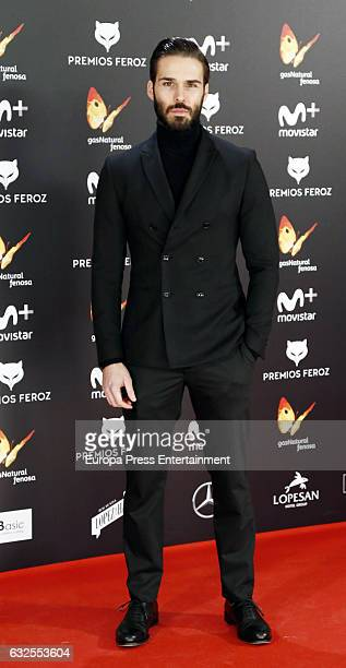 Alex Barahona attends the 2016 Feroz Cinema Awards at Duque de Patrana Palace on January 23 2017 in Madrid Spain