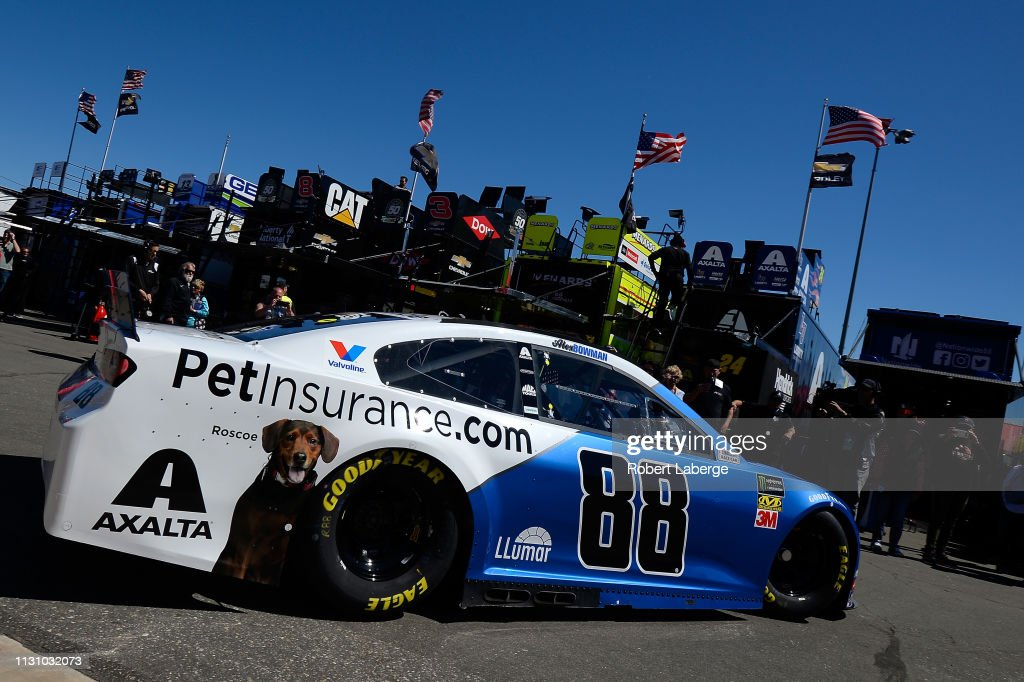 Alex Bowman, driver of the Nationwide Pet Insurance