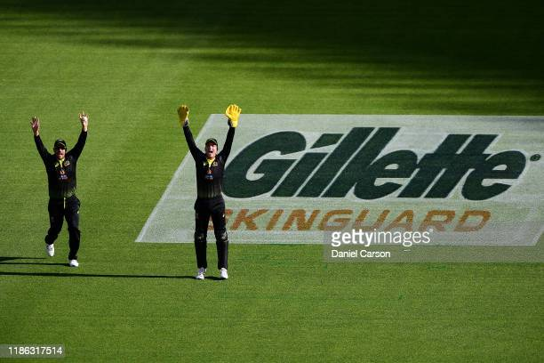Alex Carey of Australia appeals for a wicket during game three of the International Twenty20 series between Australia and Pakistan at Optus Stadium...