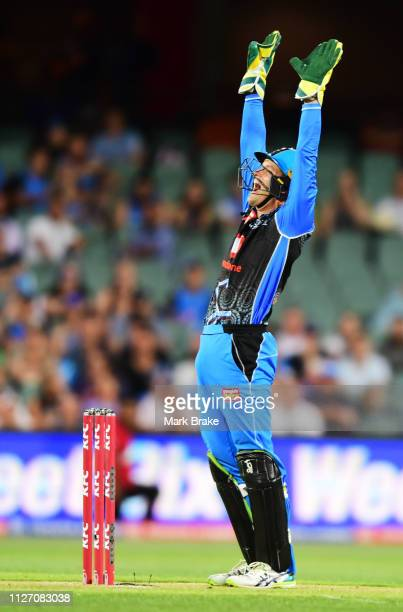Alex Carey of the Adelaide Strikers appeals for LBW against Brendon McCullum of the Heat during the Big Bash League match between the Adelaide...