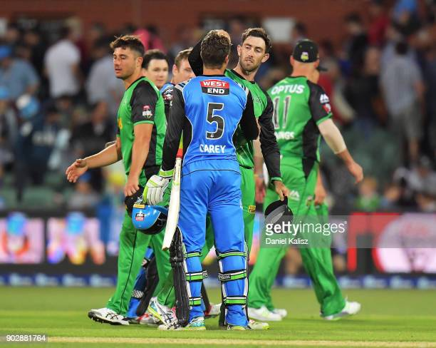 Alex Carey of the Adelaide Strikers is congratulated by Glenn Maxwell of the Melbourne Stars during the Big Bash League match between the Adelaide...