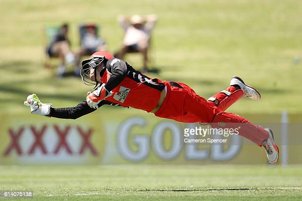Alex Carey of the Redbacks catches Nathan Lyon of the Blues off a delivery by team mate Cameron Valente during the Matador BBQs One Day match between...