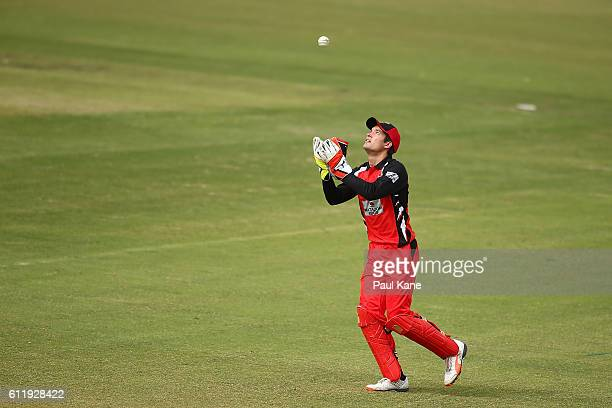 Alex Carey of the Redbacks celebrates taking a catch to dismiss Sam Whiteman of the Warriors during the Matador BBQs One Day Cup match between...