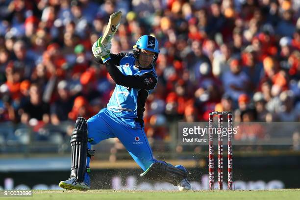 Alex Carey of the Strikers bats during the Big Bash League match between the Perth Scorchers and the Adelaide Strikers at WACA on January 25 2018 in...