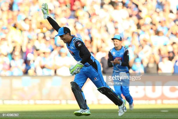 Alex Carey of the Strikers celebrates winning the Big Bash League Final match between the Adelaide Strikers and the Hobart Hurricanes at Adelaide...