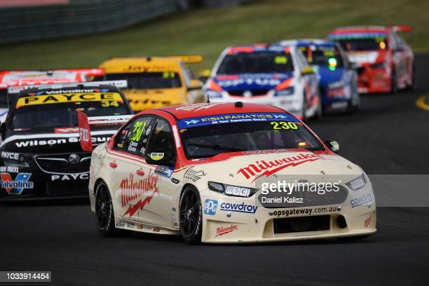 Alex Davison drives the Milwaukee Racing Ford Falcon FGX during qualifying race for grid 1 for the Supercars Sandown 500 at Sandown International...
