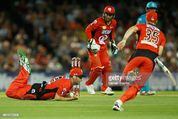 Alex Doolan of the Melbourne Renegades takes a catch to dimiss Peter Forrest of the Brisbane Heat during the BIg Bash League match between the...