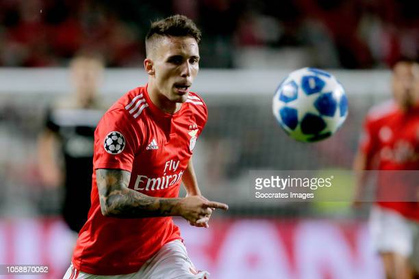 Alex Grimaldo of Benfica during the UEFA Champions League match between Benfica v Ajax at the Estadio do sport Lisboa e Benfica on November 7 2018 in...